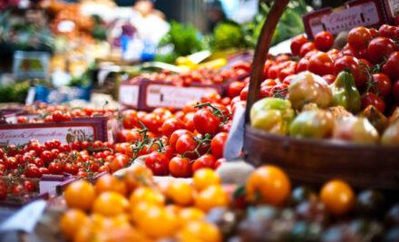 Il programma MAGIS: come e perché è differente da un semplice piano alimentare?